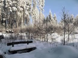 Journée en raquettes dans le parc naturel de la Forêt Noire