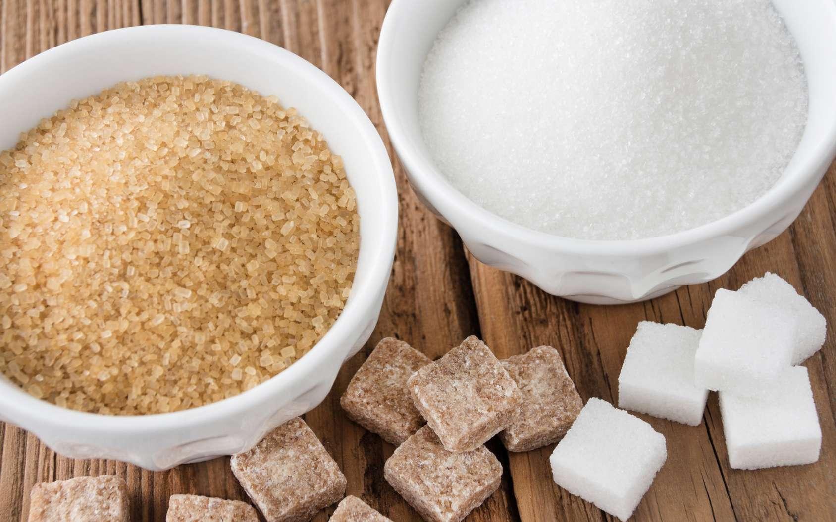 Il est partout….le sucre ce doux poison!